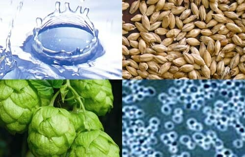Los ingredientes naturales para la elaboración de la cerveza son el agua, cereales (cebada, maíz, trigo, arroz...), levadura (fermentación) y el lúpulo (da sabor y amargor)