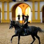 La visita a la Real Escuela Andaluza de Arte Ecuestre es muy recomendable para conocer la historia del origen y los cruces del caballo español