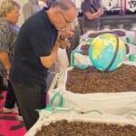La fábrica de Cailler permite acercarse al mundo del cacao y el chocolate de la mano de Nestlè